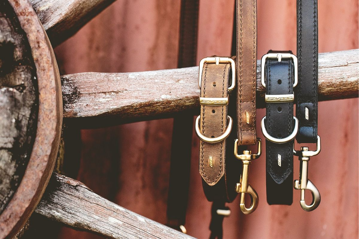Premium natural leather dog collars