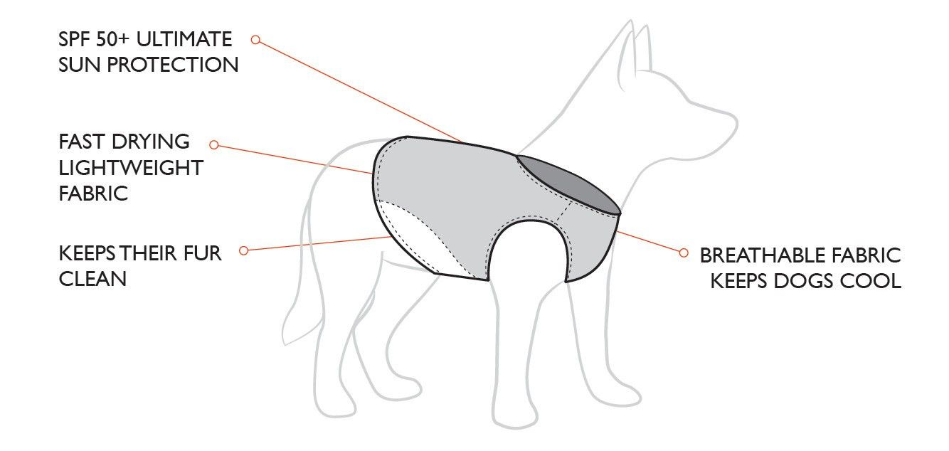 Dog Life Jacket Features